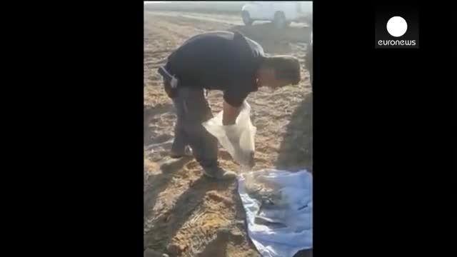 شاخه وابسته به داعش مسئول شلیک موشک به اسرائیل
