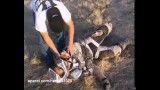 حادثه شدید برای موتور سوار
