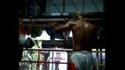 قهرمانی موی تای حرفه ای بین المللی تایلند , 2009