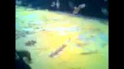 بزرگترین شعله زرد ایران!!!!!!