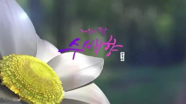 پخش سریال کره ای دختر امپراطور از شبکه ۵ سیما