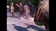 جنایتی دیگر از وهابی ها در سوریه