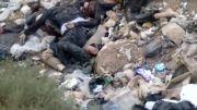 کشتار بی رحمانه دسته جمعی مردم سوریه توسط تروریستها
