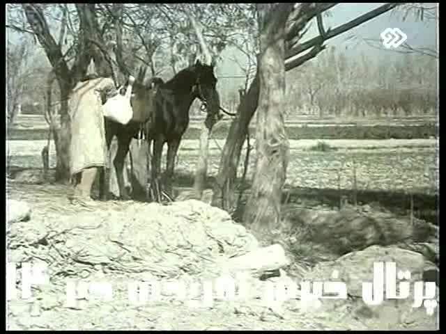 طب و احیا مرده توسط ابوعلی سینا