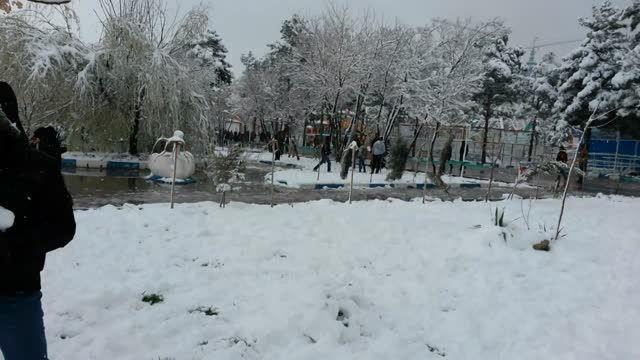 اینجا کرمان- پارک مادر. بارش برف. 20 اسفند 1393