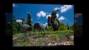 مجسمه های گیاهی - مونترال کانادا 2013