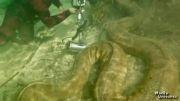 بزرگترین مار های جهان که تا کنون یافت شدند