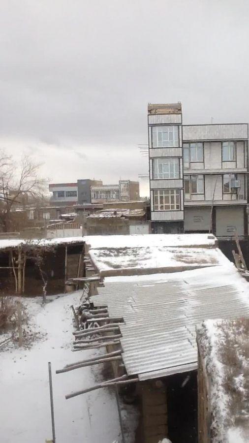 باریدن برف