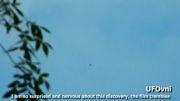 تصاویر جدید بشقاب پرنده