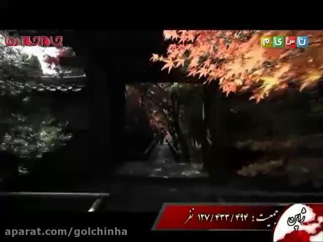 فیلم سفر به ژاپن جاذبه گردشگری توریستی (گلچین صفاسا)