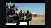 مجاهدان اخوان المسلمین