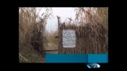 کشتار بی رویه پرندگان در شمال کشور به روایت خبر 20:30