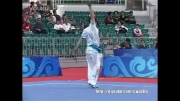 ووشو ، چان چوون ، مسابقات داخلی چین 2013 ، جائو جیه از خوبی