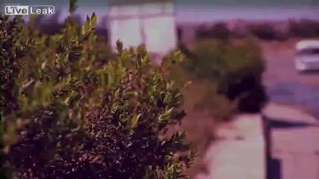 نینوا در چنگال داعش 03