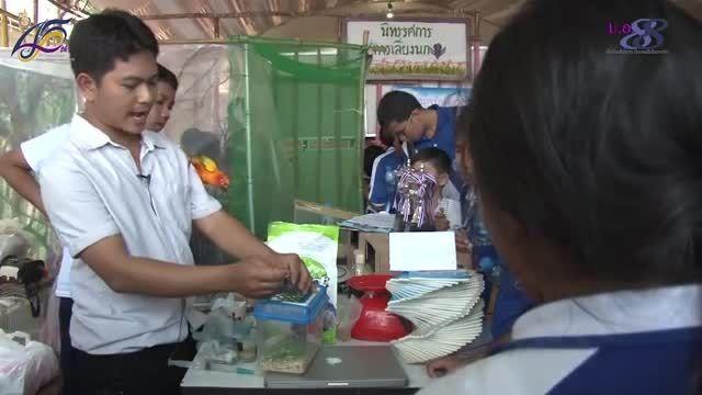 نمایشگاه آموزشی پرندگان در کشور تایلند