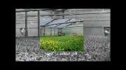 فن مرغداری،فن گلخانه،هواکش