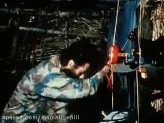 کلیپ مستند حمله شامپانزه ها با چوب و سنگ به پلنک رباطی