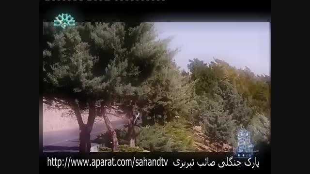 پارک جنگلی صائب تبریزی و پارک مینیاتور تبریز