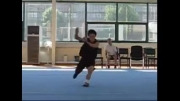 ووشو - تمرین تیم شانگهای در تابستان سال ۲۰۰۵ بخش دوم