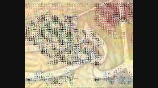 میلاد نور (کلیپ ترکیبی ویژه برنامه میلاد حضرت مهدی عج )