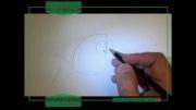 طراحی به روش ساده (طراحی از ماهی فانتزی)