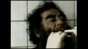 کلیپی از جریان دستگیری صدام