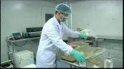 دانشمندان از ادرار سلول های بنیادی تولید نمودند