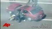 حمله سگ پلیس به مجرم