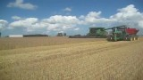 برداشت محصول کشاورزی