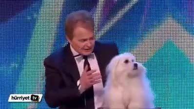 صحبت کردن سگ در برنامه زنده تلویزیونی!!!!