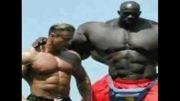 بزرگ ترین مرد جهان؟؟؟؟؟؟؟؟؟؟؟؟؟