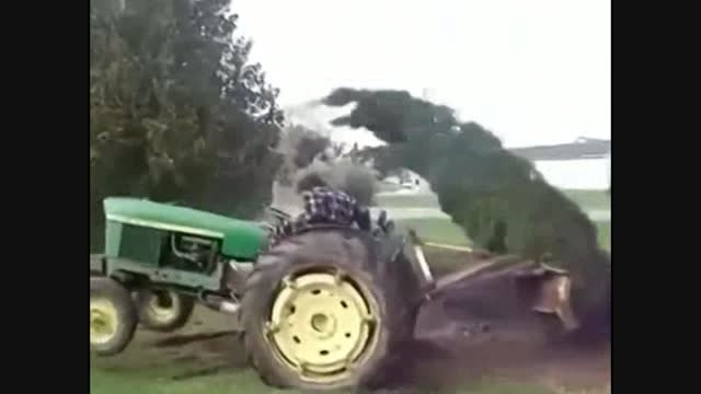 انتقام گرفتن درخت!!!