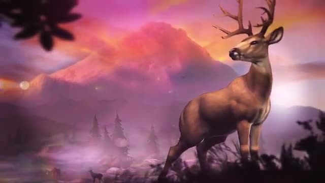 دانلود بازی شکار حیوانات برای اندروید