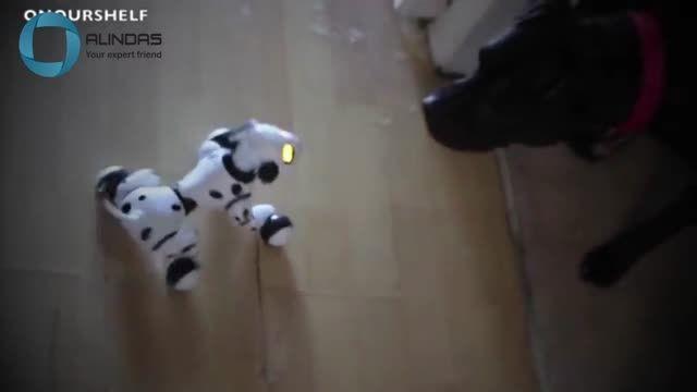 دنیای ربات ها(17)-قابلیتهای ربات در کمک رساندن به انسان