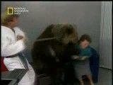 حمله خرس در برنامه تلویزیونی