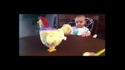 عکس العمل خنده داربچه و مرغ تخم گذار !!:))