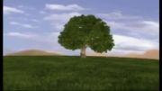 زمین بدون درخت