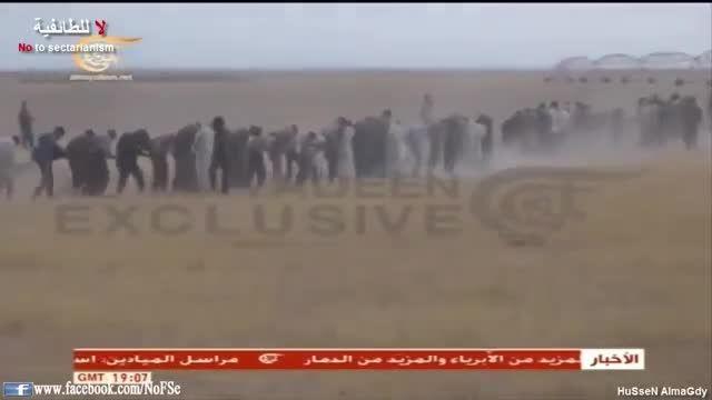 الرمادی - اسارت 700 داعشی بدست حزب الله عراق