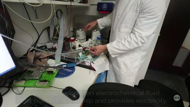 شهرسخت افزار: خون الکترونیکی 5 بُعدی IBM