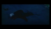 قلب یخی - قتل ستاره ( آشا محرابی )