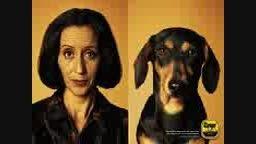 شباهت چهره به حیوانات