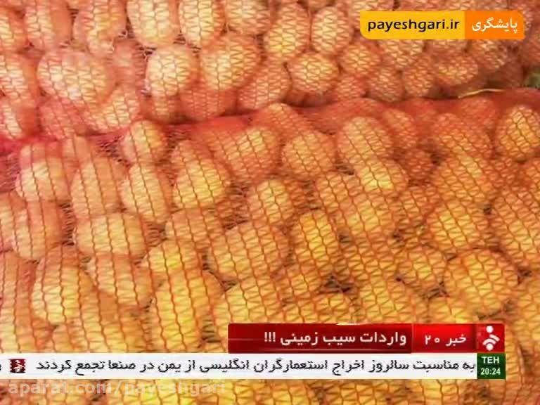 واردات سیب زمینی به کشور