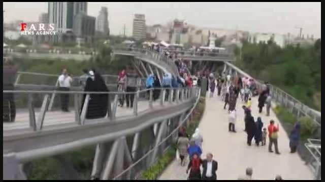 پل طبیعت/ طراحی بانوی جوان ایرانی جزو 5سازه برتر جهان
