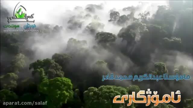 نصیحت سودمند , ماموستا عبدالکریم محمد قادر , زبان کردی