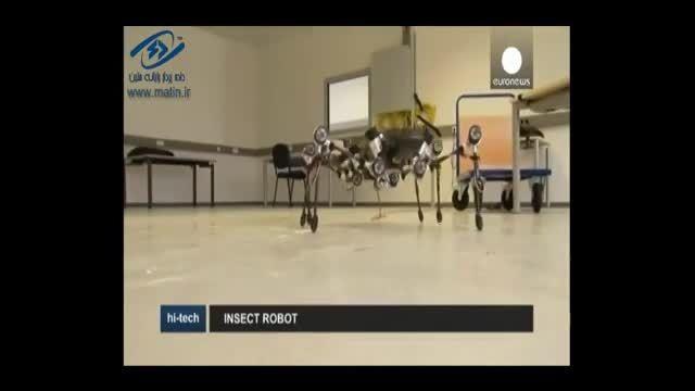 روبات هکتور شبیه حشره