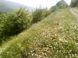 طبیعت بکر رامیان