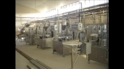 کارخانه لبنی فروشی
