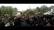 تعداد عجیب زنجیر زنان در یزد