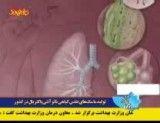 تولید ماسک های تنفسی گیاهی نانو آنتی باکتریال در کشور