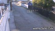 کشتن سگ همسر توسط زیر گرفتن با ماشین